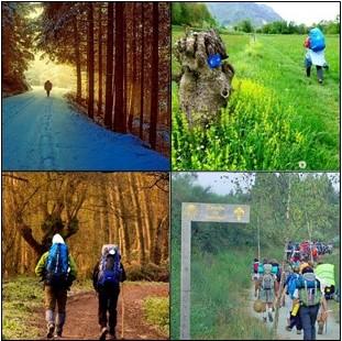 ¿Cuál es la mejor época para hacer el Camino de Santiago?